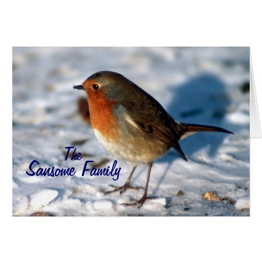 From My Family to yours Christmas Robin Card