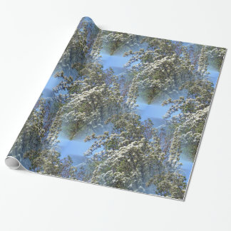 From out of the sky... wrapping paper