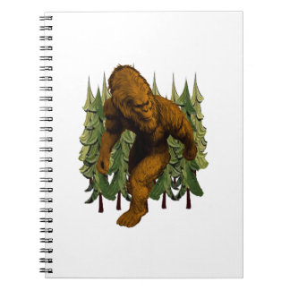 FROM THE FOREST NOTEBOOK