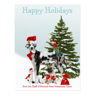 From Your Veterinarian Santa Pets Postcard