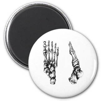 Front and side view of bones of the feet 6 cm round magnet