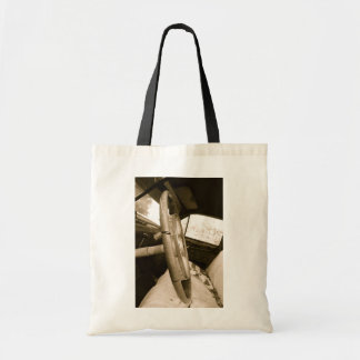 Front seat tote