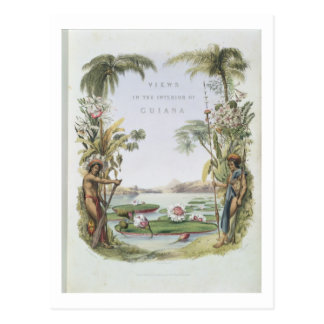Frontispiece to 'Views in the Interior of Guiana', Postcard