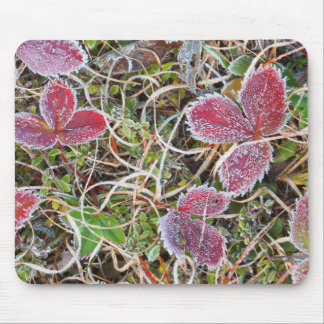 Frost covered leaves, Canada Mouse Pad