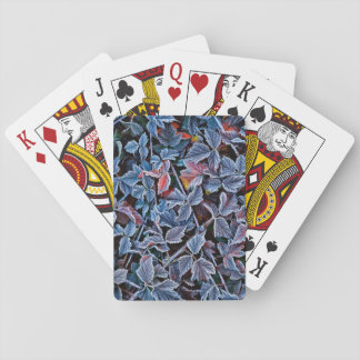 Frost on autumn leaves, Oregon Playing Cards