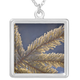 Frost on evergreen tree, Homer, Alaska Square Pendant Necklace