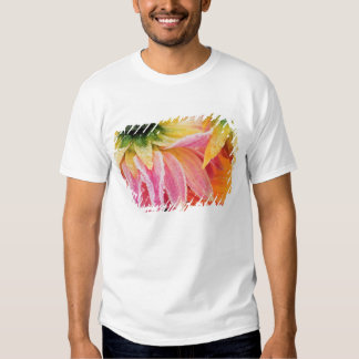 Frost on the last blooms of the fall - Dalhia - Tee Shirt