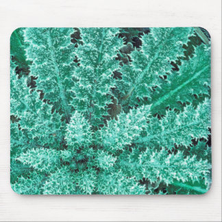Frost On Thistle, Olympic National Park Mouse Pad