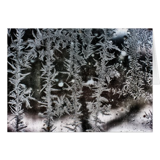 Frost on Window Card