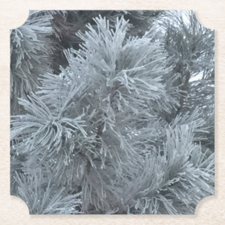 Frost Paper Coaster