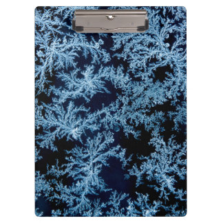 Frost patterns close-up, California Clipboard