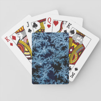 Frost patterns close-up, California Playing Cards