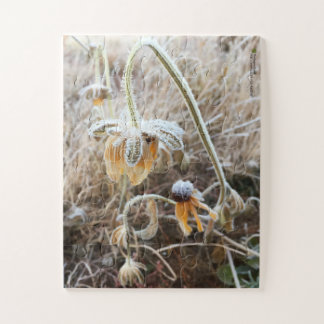 Frost Wilted Rudbeckia Flowers Photograph Jigsaw Puzzle
