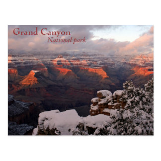 Frosted Canyon Postcard