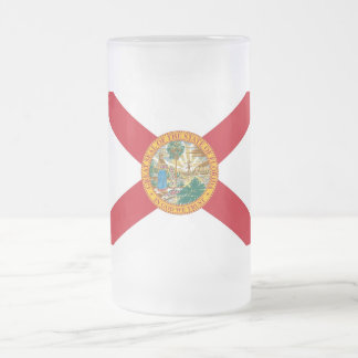 Frosted Glass Mug with flag of Florida, USA