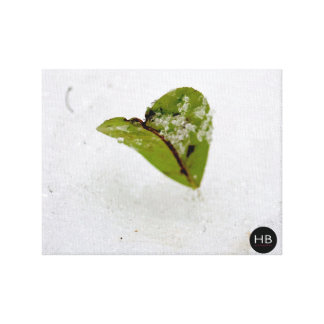 Frosted Leaf Gallery Wrapped Canvas