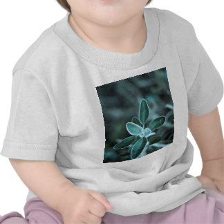 Frosted Leaf Tee Shirts
