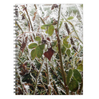 frosted leaves notebook