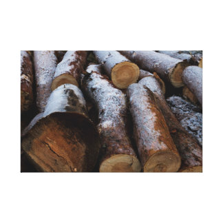 Frosted Logs Canvas Canvas Print