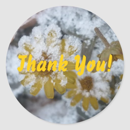 Frosted yellow flower- Thank you Sticker