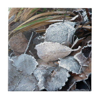 FROSTY AUTUMN LEAVES ON GROUND SMALL SQUARE TILE