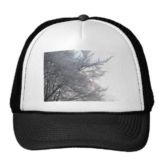 Frosty Mesh Hats
