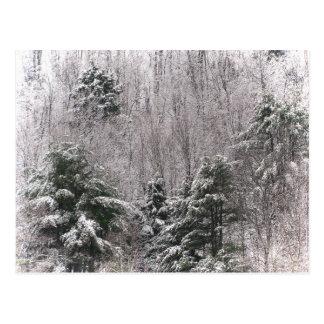Frosty Hills Postcard