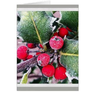 Frosty Holly Card