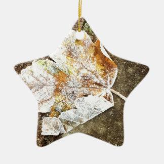 Frosty Leaf Ceramic Star Decoration