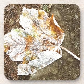 Frosty Leaf Coaster