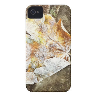 Frosty Leaf iPhone 4 Cover