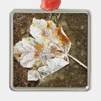 Frosty Leaf Silver-Colored Square Decoration