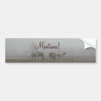 Frosty Morning Fog bumper sticker