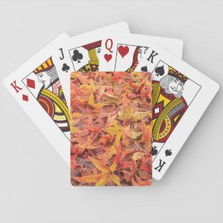 Frosty morning, Mill Creek, WA, USA Poker Cards