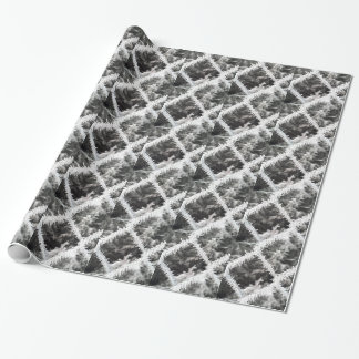 Frosty Photo Wrapping Paper