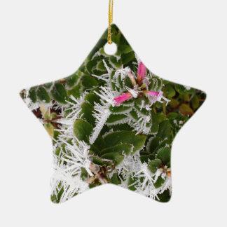 frosty pink ceramic ornament