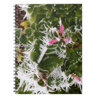 frosty pink notebook