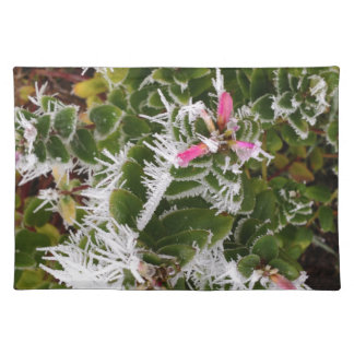 frosty pink placemat