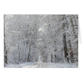 Frosty road greeting card