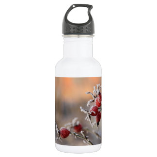 Frosty rose hips in sunlight 532 ml water bottle