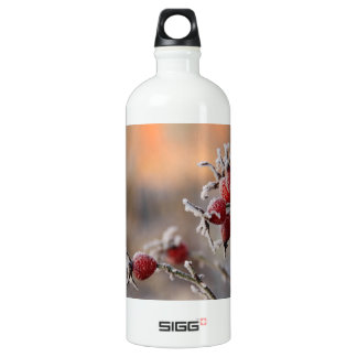 Frosty rose hips in sunlight SIGG traveller 1.0L water bottle