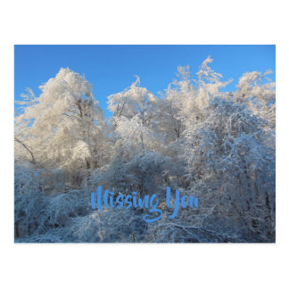 Frosty Trees Missing You Postcard
