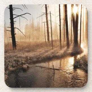Frosty Yellowstone Morning Coasters