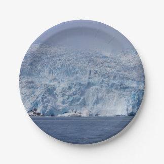 Frozen Beauty 7 Inch Paper Plate