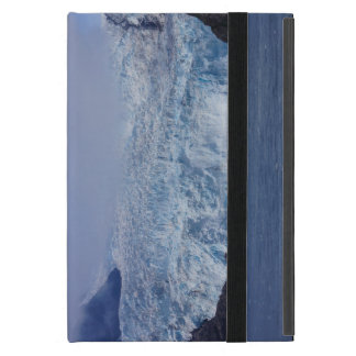 Frozen Beauty Cover For iPad Mini