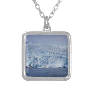 Frozen Beauty Silver Plated Necklace