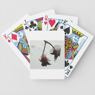 Frozen Bicycle Playing Cards