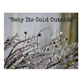 Frozen Branch Cold Outside Postcard