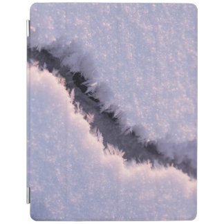 Frozen chasm iPad cover