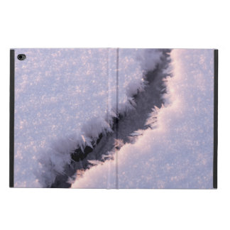 Frozen chasm powis iPad air 2 case